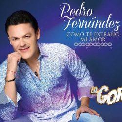 """""""Como Te Extraño Mi Amor"""" con Pedro Fernández con altos niveles de audiencia"""
